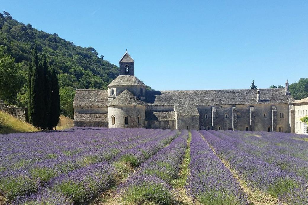 luberon-provenza-lavanda-monastero-scambio-casa-estate di san martino